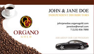 Car Program Promo