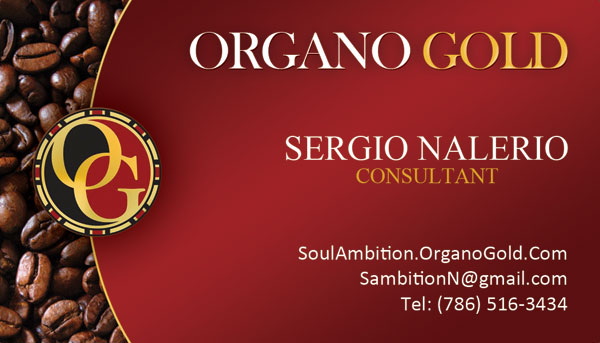 Sergio Nalerio Organo Gold Business Cards